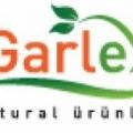 Garlex Sarımsak Şampuanı