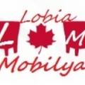 Lobia Mobilya & Lobia Koltuk Döşeme
