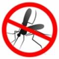 Bahçeşehir SLR sineklik